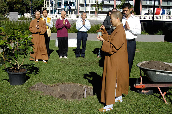 Planting of the Bodhi Tree, Gallery of Modern Art, April 2008