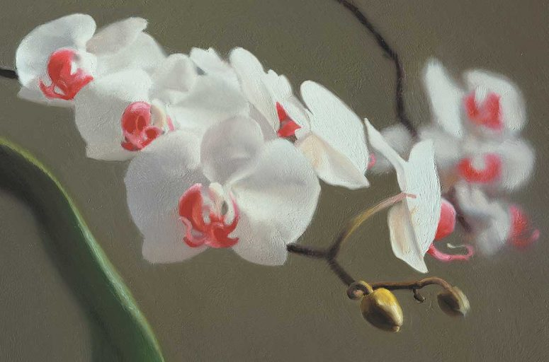 Gerhard Richter, Germany b.1932 / Orchid (848-9) 1997